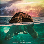 Sea Turtle by KronDesign