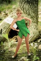 TinkerBell cosplay new3 by clefchan