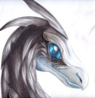 Raptor Kennaz -Cuento by DarkMirime