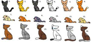 Free Warrior Cat Adoptables by RaindropLily