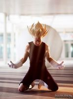 Majin Vegeta Cosplay .:Feel the power:. by Alexcloudsquall