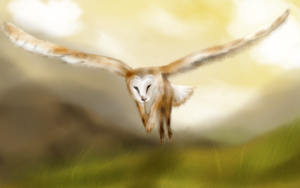owl gryphon by swanblood