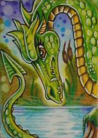 ATC: 'Green Pond Dragon' by catbones