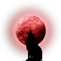 Moon-Coyote Silhouette by Viktoria-Lyn