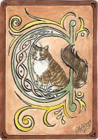 ATC C is for Cat by Haawan