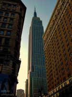 Empire State of Mind by scottface