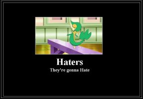 Haters Meme by 42Dannybob