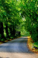 Side Road by DoctorAwesome