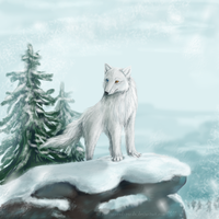 Winter by Zhucha