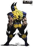 Wolverine by ExPR