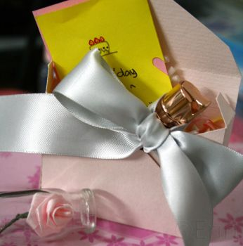 Gift Packaging by Erin1392