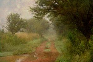 Mist on the Highveld by EMCoetzee