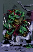 Raphael colored by hiasi