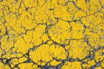Cracked Yellow Asphalt by GrungeTextures
