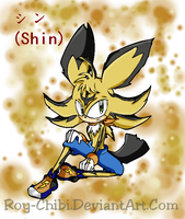Revised - Shin the Hedgehog 2 by Inoune