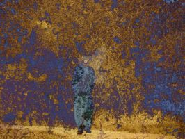 The Invisible Man by LovingLivingLife
