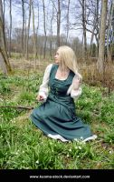 Snowdrop Forest 28 by Kuoma-stock