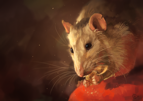hungry rat by AlaxendrA