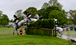 Badminton XC - Grey Jumping by HKW1994