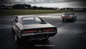 Charger + Cougar by AmericanMuscle