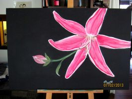 Pink Lily by Abaez40