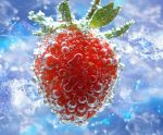 Ice Berry by Araka13