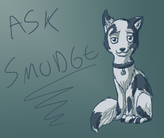 Ask Smudge by brandy212