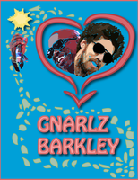 Gnarlz Poster Final by MissusHow