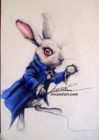 White Rabbit by RoxaneLys
