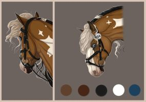 BRlS Mexican bridle by BRls-love-is-MY-Live