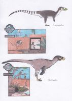 Dinosaur Zoo: Compies and the bird robber by Dontknowwhattodraw94