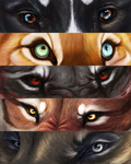 Lion Eyes 3 by Calicolupe