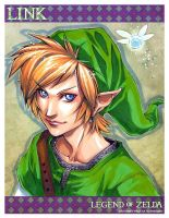 ADULT Link - portrait by DreamworldStudio