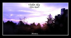Violet Sky::After Rain:: by montex
