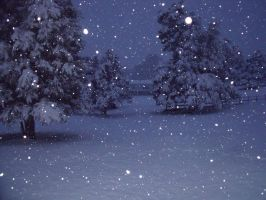 The Night's Wintry Snow by Moonstone27