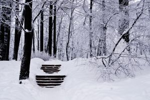 Stairs and Snow by apple-being