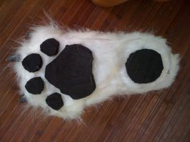 wolf back paw under view by morganwtb11