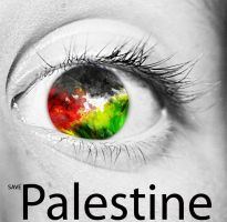 save Palestine by douf