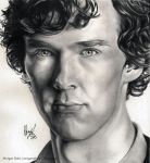 The Consulting Detective by blu-fantasy