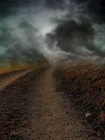 Foggy Path Premade by LavitaDistress