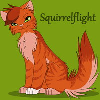Squirrelflight by NighshadeIceheart