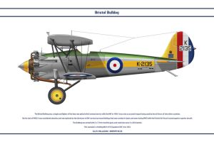 Bulldog GB 54 Sqn 2 by WS-Clave