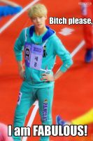 EXO Macro 11 by TwisterWithEunHae
