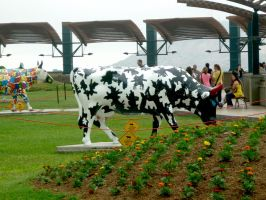 Cow 3 by JacquiJax-Stock
