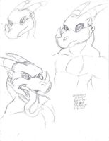 Veedramon heads by Bigshow196