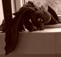 Toothless Plush (After adding more stuffing) by ProjectToothless
