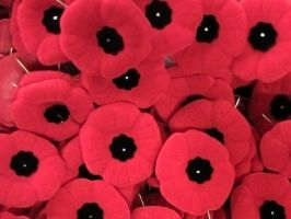 Remembrance Day Poppy Pins by SweetSoulSister