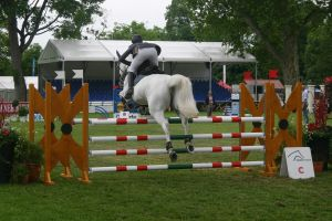 Show Jumping Stock 042 by LuDa-Stock