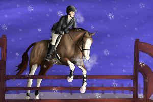 Winter Jumping by WinnyDaPoo