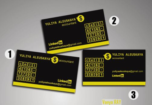 Business-card Accountant (Initial Variations) by VanyaRAY